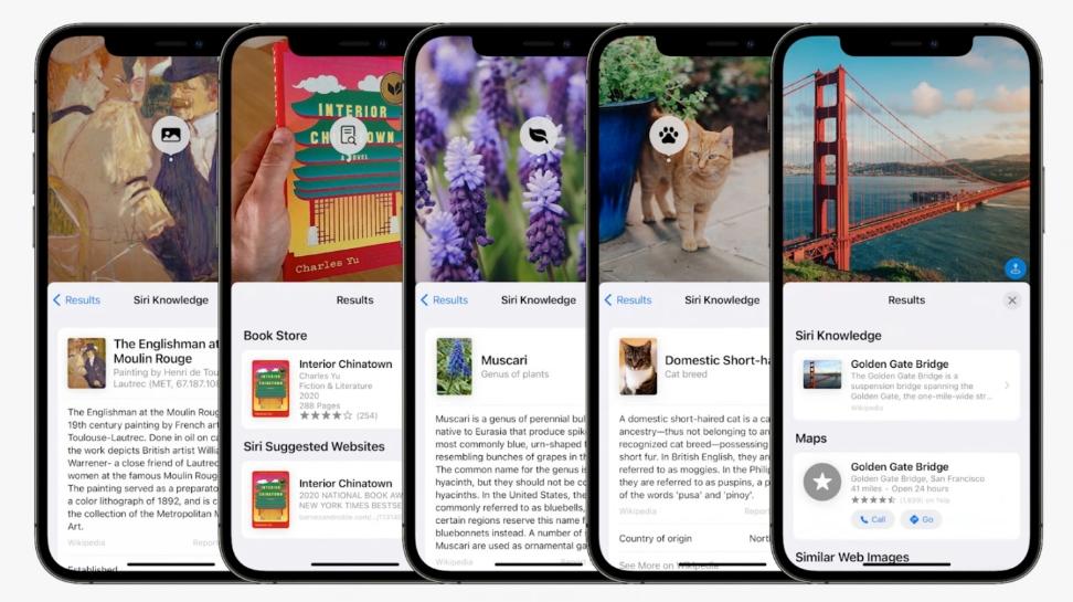 Nightmarish iOS 15 bug deletes saved photos from your iPhone